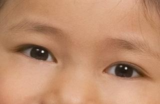 yeuxfedc